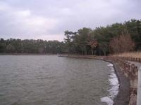 Suhara_park