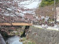 Yamazaki_river2