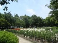 Chikusa_park