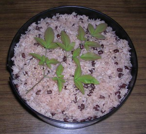 Steamed_rice_with_red_beans