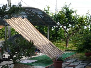 Sunshade_an_awning