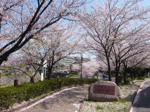 Yamazaki_river4