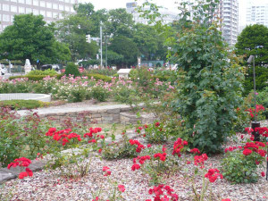 Sapporo_main_street_park2