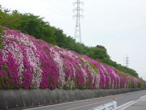 Toyota_shimoyama_factory3