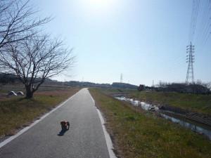 Aizumame_river_promenade