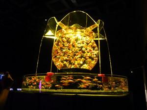 Art_aquarium2