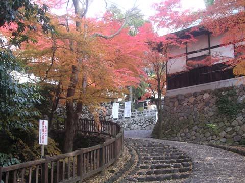 Inuyamac2