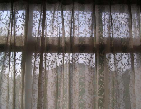 A_lace_curtain