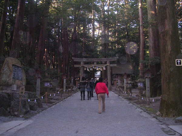Tubaki_shrine